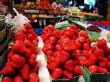 fraises3.jpg